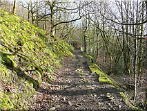 SE0421 : Highlee Lane, Ripponden by Humphrey Bolton