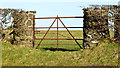 D4501 : Field gate, Islandmagee by Albert Bridge