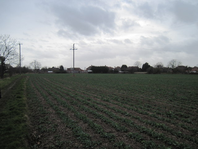Field  edge  footpath  back  to  Bilton  and  B1238