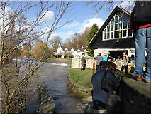 SO5074 : Beside the River Teme on a Spring Sunday morning by Jeremy Bolwell