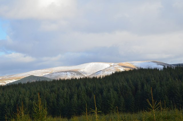 Dundreich from Cloich Forest