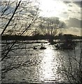 SP6406 : Floods by Ickford Bridge by Rob Farrow