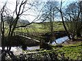 SO4115 : Footbridge over the River Trothy, Tal-y-coed by Ruth Sharville