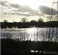 SP6406 : River Thame floods at Ickford Bridge by Rob Farrow