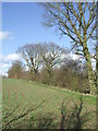 TM2475 : Field Boundary by Keith Evans