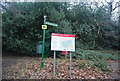 TQ4677 : Bostall Woods by N Chadwick