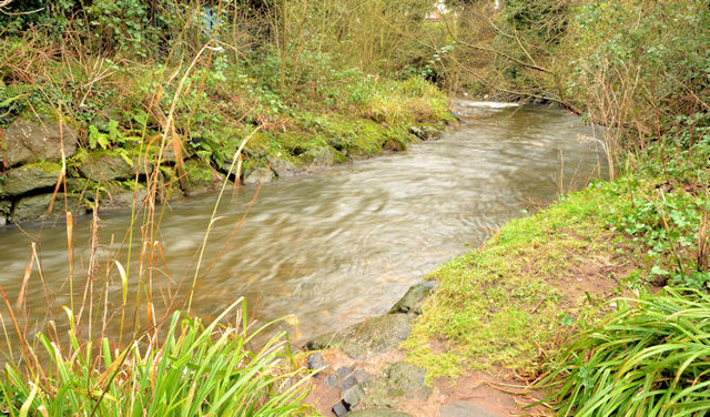 The Three Mile Water, Whiteabbey (4)