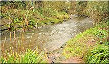 J3582 : The Three Mile Water, Whiteabbey (4) by Albert Bridge