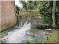 ST5663 : The weir and millpool at Portridge Mill by Dr Duncan Pepper