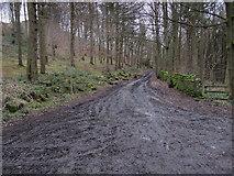 SE1940 : Springs Road by Chris Heaton