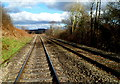 SO3321 : Welsh Marches railway in Pandy by Jaggery
