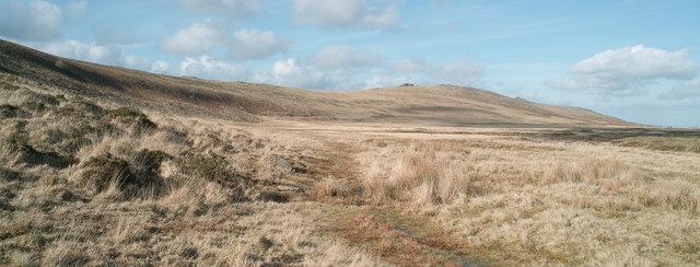 Path through Taw Plain