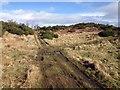 NH6236 : Tracks across Drumashie Moor by Steven Brown