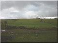 SD7253 : Pastureland near Hammerton Hall by Karl and Ali