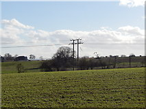 TM1440 : Power cable near Thorington Hall by Hamish Griffin