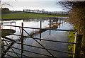 SU4682 : Now we've got a Flood by Des Blenkinsopp