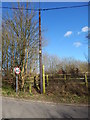 TL9740 : Telegraph pole and 40 MPH speed limit coming out of Calais Street by Hamish Griffin