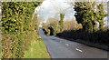 J4680 : The Coothall Road near Crawfordsburn by Albert Bridge