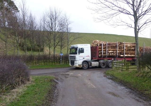 Hazard on narrow rural road