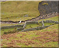 NY7453 : Sheepfold in Hope Cleugh by Trevor Littlewood