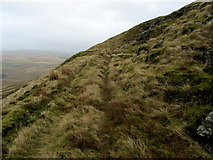 SD7942 : Grass Track on the Northern Flanks of Pendle Hill by Chris Heaton