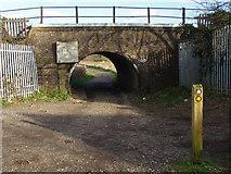 SU9947 : Railway Bridge by Alan Hunt