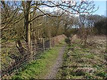 SU9947 : Footpath, Artington by Alan Hunt