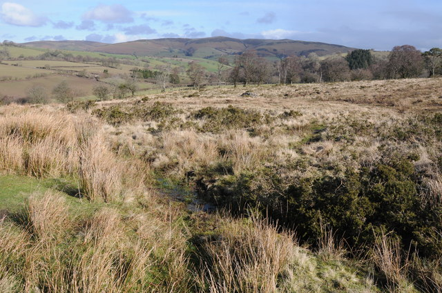 Rough upland grazing near Cantel