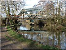 SU9947 : Two bridges by Alan Hunt