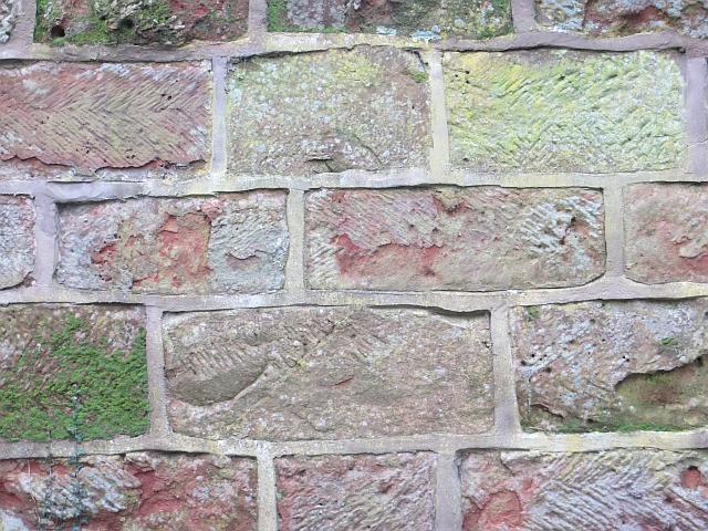 Wall, Shotton Hall