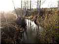 TM3490 : River off Alma Bridge by Adrian Cable