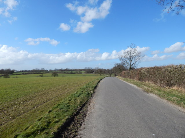 Road towards Priory Green at Round Maple