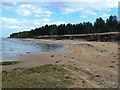 NH7982 : Dornoch Firth Shoreline by Mary and Angus Hogg