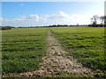 TL9443 : Footpath, Priory Green by Hamish Griffin