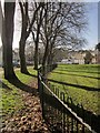 SX9164 : Trees and fence, Upton Park by Derek Harper