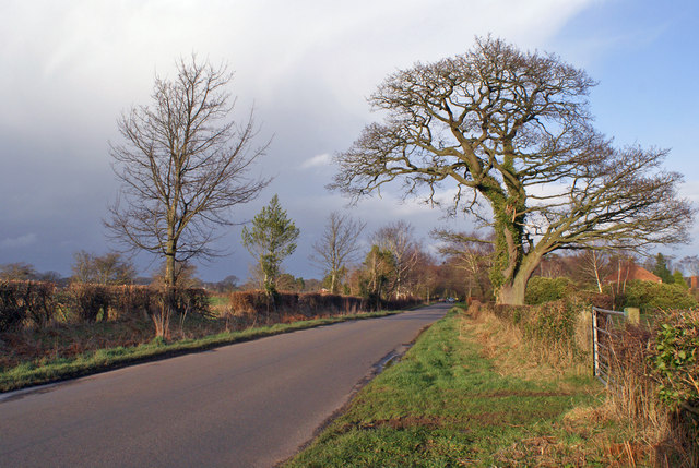 Road at Bank Head