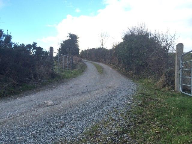 Laneway at Benagh