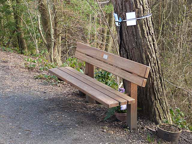 Memorial bench on the Derwent Path