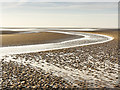 SD3015 : Low tide on the Birkdale Sands by William Starkey