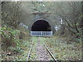 SO9490 : Blower's Green railway tunnel (Dudley end) by John Winder