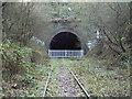 SO9490 : Blower's Green railway tunnel (Dudley end) by John Winder