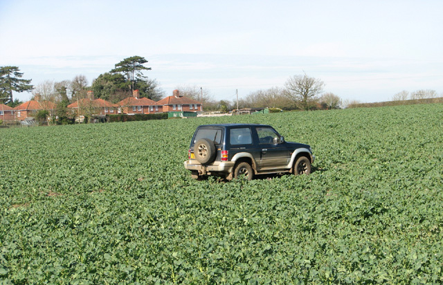 Car in crop field