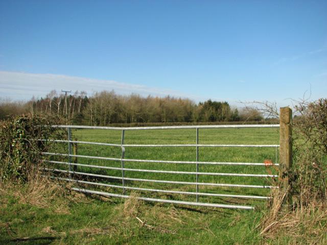 Field gate beside Common Road