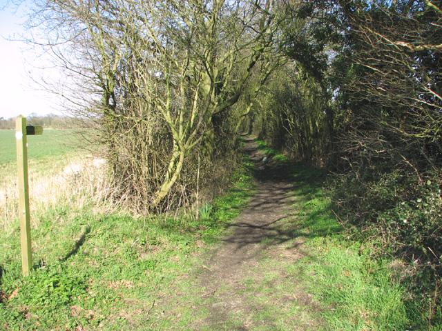 Bridleway off Potter's Lane