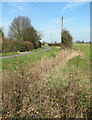 TM1096 : Overgrown ditch beside Hill Road by Evelyn Simak