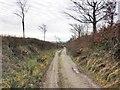 SS9130 : Track, beyond Leigh Lane by Roger Cornfoot