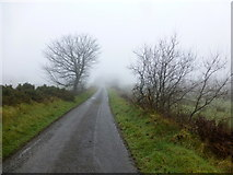 H6160 : Misty along Greenhill Road by Kenneth  Allen