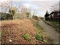 ST5981 : Highwood Lane by Derek Harper