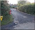 SO4693 : Yellow and red near Hazler Hill Farm, Church Stretton by Jaggery