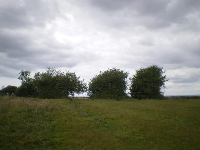 Pad Field Pond - Lancaster
